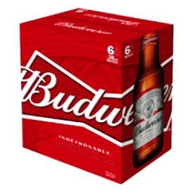 Bière Budweiser 5%alc 6 Bouteilles 341 mL