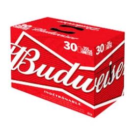 Bière Budweiser 5%alc 30 Canettes 355 mL