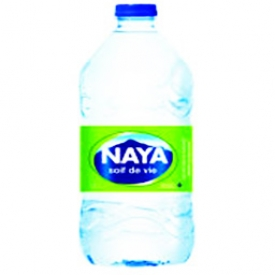 Eau Naya Bouteille 1L