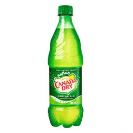 Liqueur Canada Dry Ginger Ale Bouteille 500 mL