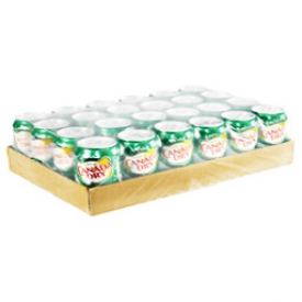 Liqueur Canada Dry Ginger Ale 24 Canettes 355 mL