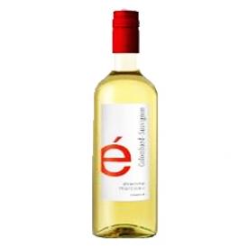 Vin Blanc Colombard Sauvignon Étienne Marceau de France